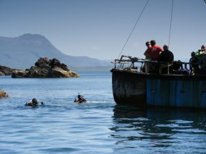 diving the summer isles