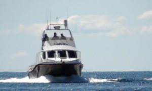 Summer Isles Sea Tours